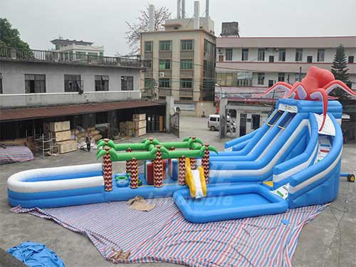 Commercial Amusement Park Inflatable Pool Water Slider , Frog Inflatable Water Slides With Pool